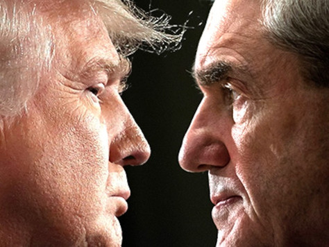 Episode 25: Trump, Mueller and Impeachment with Dr. Wayne Steger