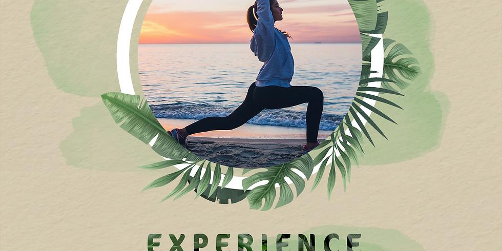 "Experience ""Escape & Elevate"" at Ras Sudr"