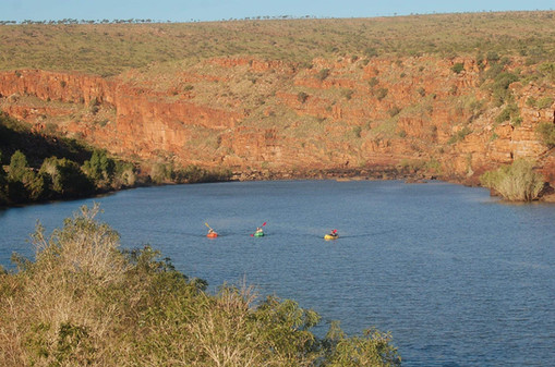 Fitzroy River, Western Australia, Credit: Ruby Albury