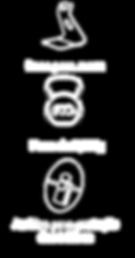 Estrutura_funções_mini.png