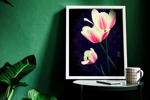 Ombre Blossom I {Giclee Print} 16x20