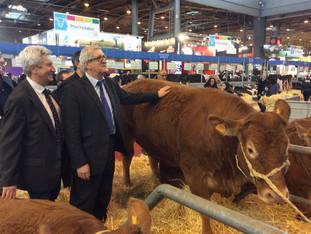 Du pré à l'assiette : Limoges capitale agricole de la grande région