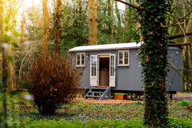 Shepherds Hut  In The Forest (33).jpg