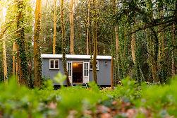 Shepherds Hut In The Forest (28).jpg