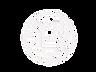 logo%20transnew_edited.png