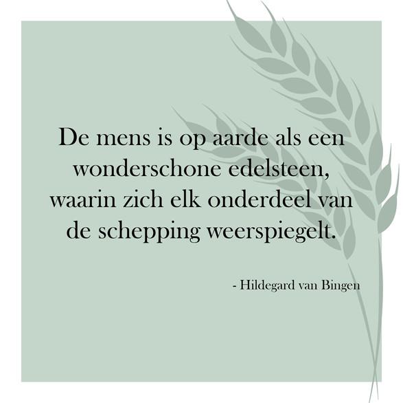 Edelsteen-Hildegard.jpg