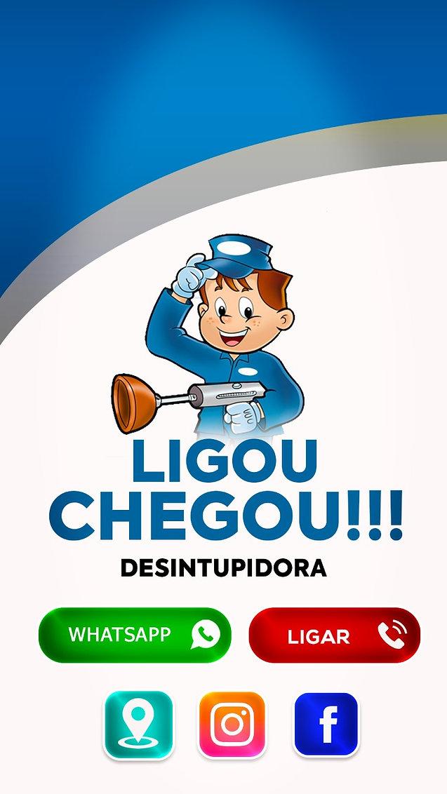 Logo Ligou Chegou.jpg