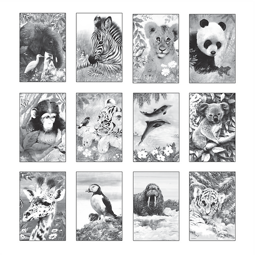 ColoringDeck Wild Animals