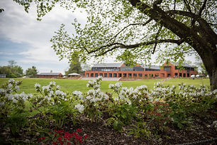 School from Oval 2017.jpg