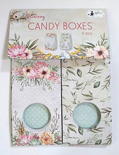 Canndy Boxes PIATEK Awakening