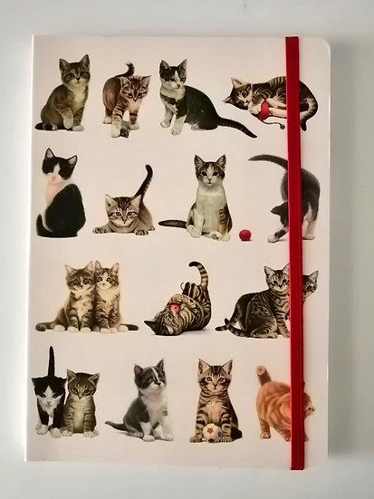 Notebook A5 Franciens Katten