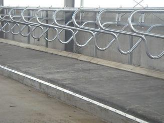 DurayLay Cow Mattress System