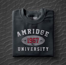 Amridge_University_Sand_Background.jpg