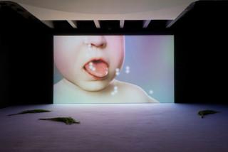 Marten Helen, Evian Disease, Palais de Tokyo, Paris