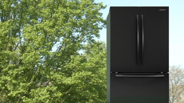 Leckey Mark, GreenScreenRefrigeratorAction. 2010