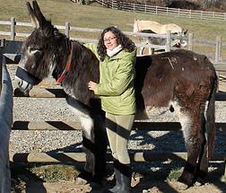 Asino Felice Trekking con gli asini Lisa Mabilia