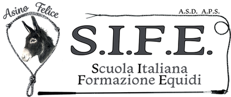 AsinoFelice_Logo.png