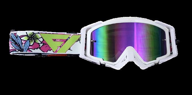 Gafas Motocross FlowVision CG Edition