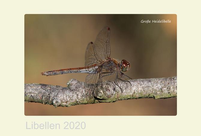 Libellenkalender 2020