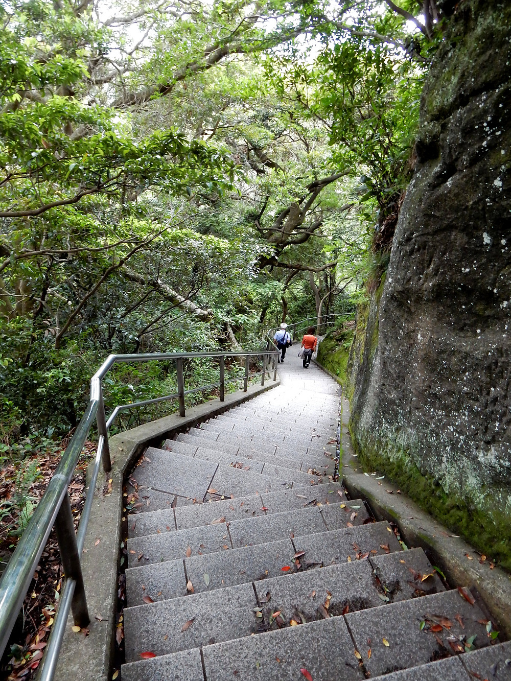 Modern staircase running across the cliffs.