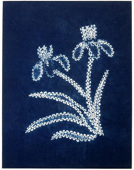 Blue shibori iris main photo