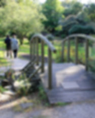 Furzey Gardens.jpg