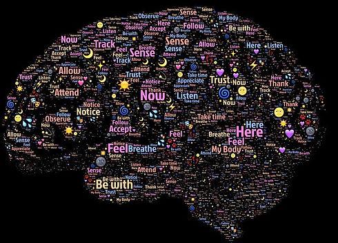 brain-998996__480.jpg