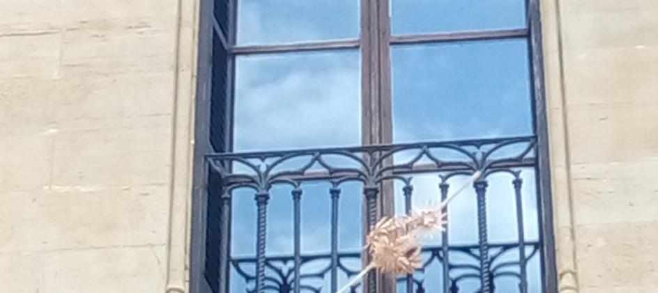 window in town