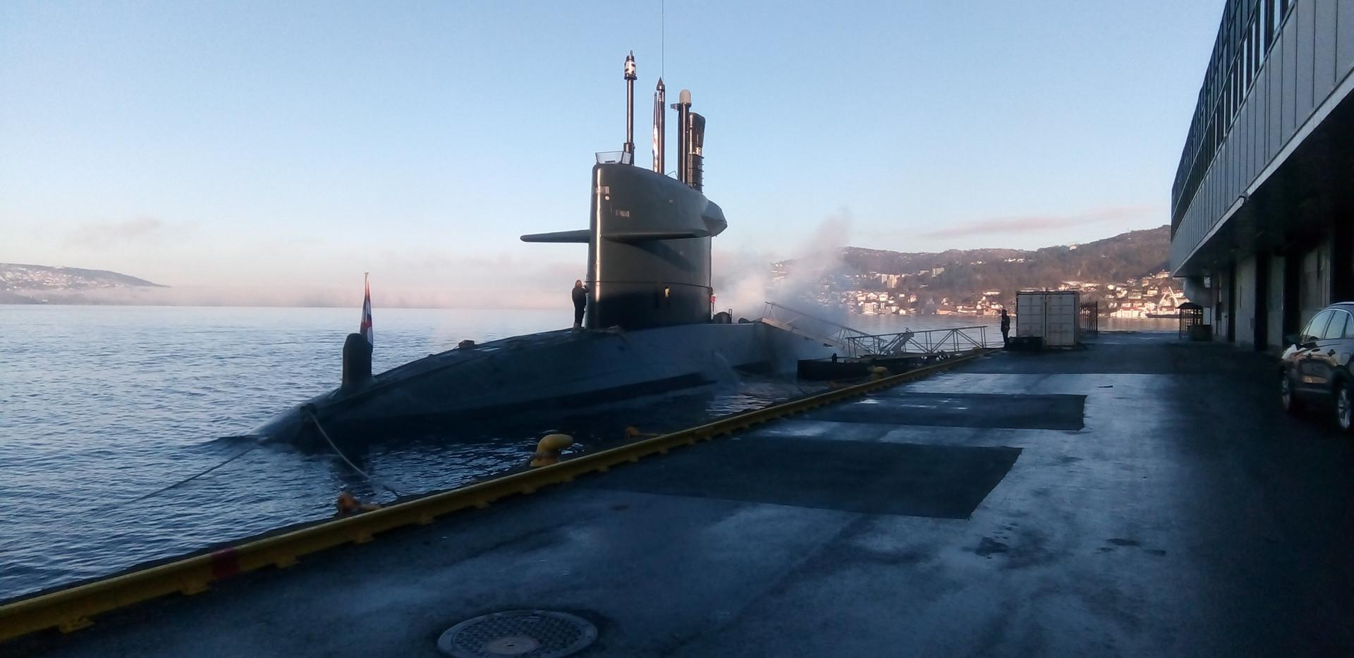 Norweagen Navy