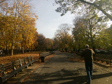 The local park