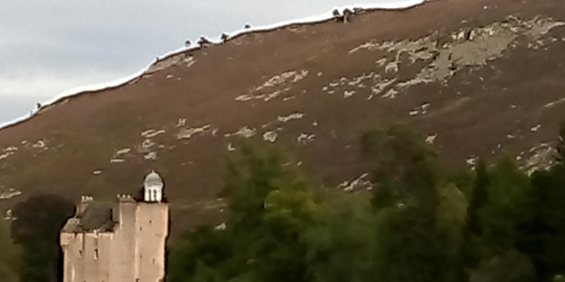 The Lairds Castle