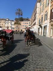 Tourist vehicles