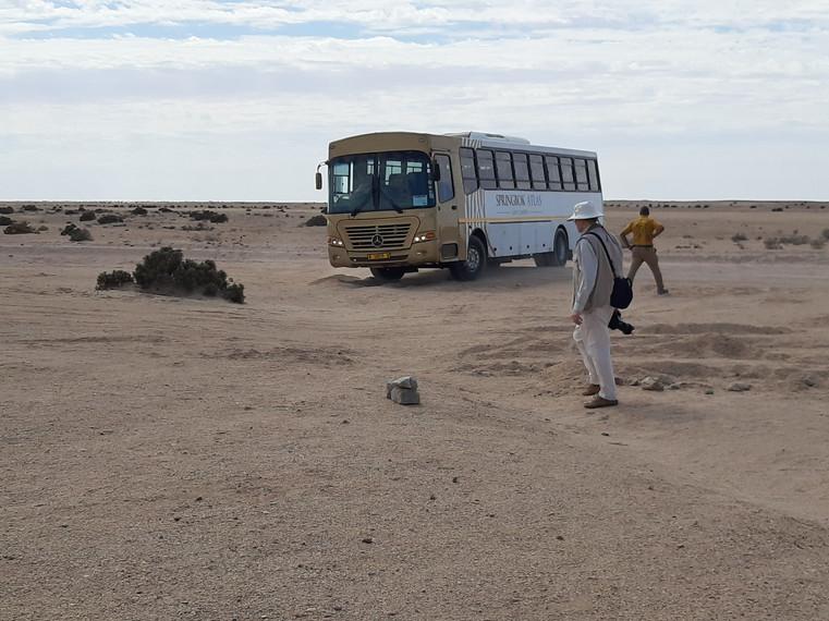 Turn the Bus around