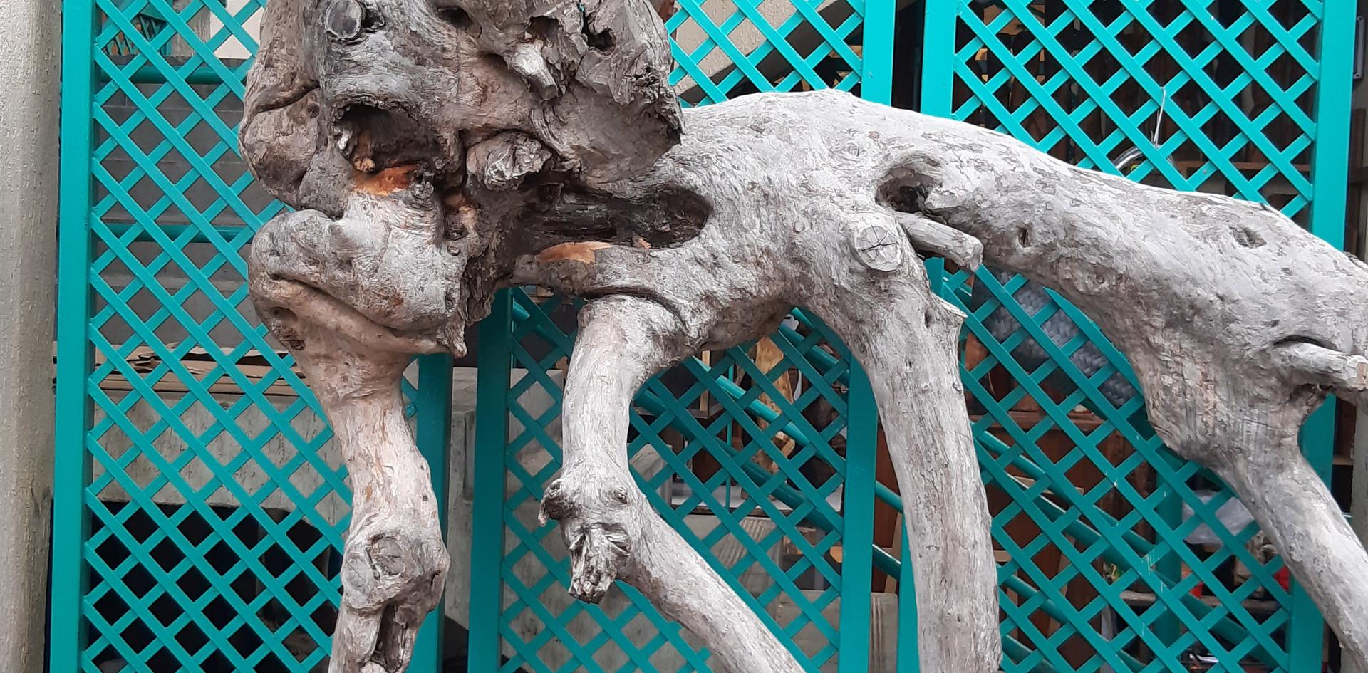 Drift wood Sculptures