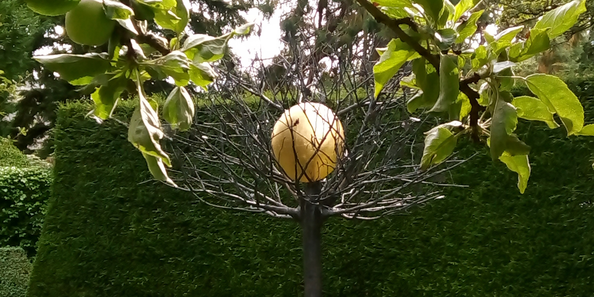 Tree of Life sculpture by the Arran artist Tom Pomeroy.