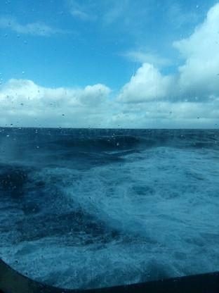 Wild Seas - Not really