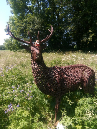 Wild Flower field - Metal Deer