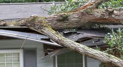 adhogg_builder_natural_disaster_refinishing-9