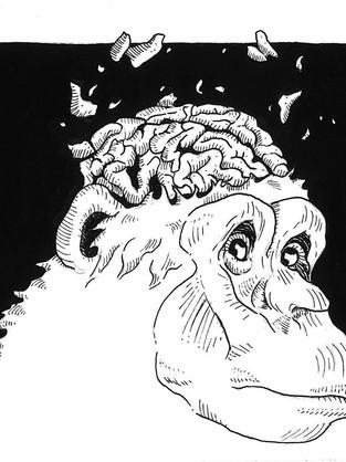 Tame That Monkey Brain