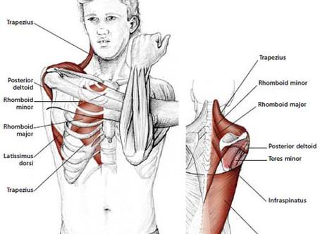 Self Help for Shoulder Pain