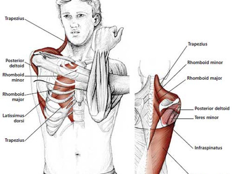 Self Help for Shoulder Pain