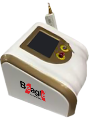 10 Hz Nd-Yag Laser - Beagle Lasers