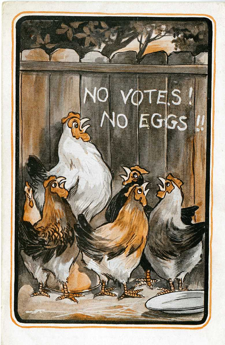 No Votes No Eggs JPEG.jpg