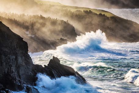 Newfoundland | Canada
