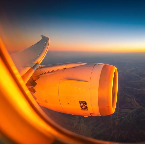 Scoot | Boeing 787-8 Dreamliner