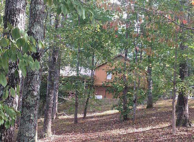 House on the Hill.jpg