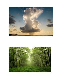 cloud - trees