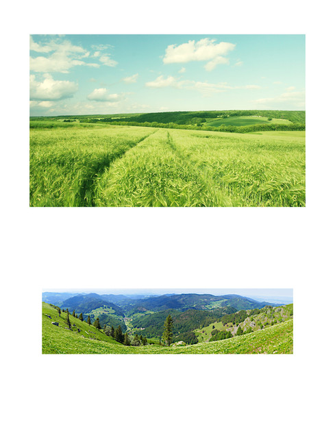 BasicLandscapes.jpg