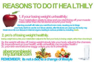 Grundlagen meiner Ernährung