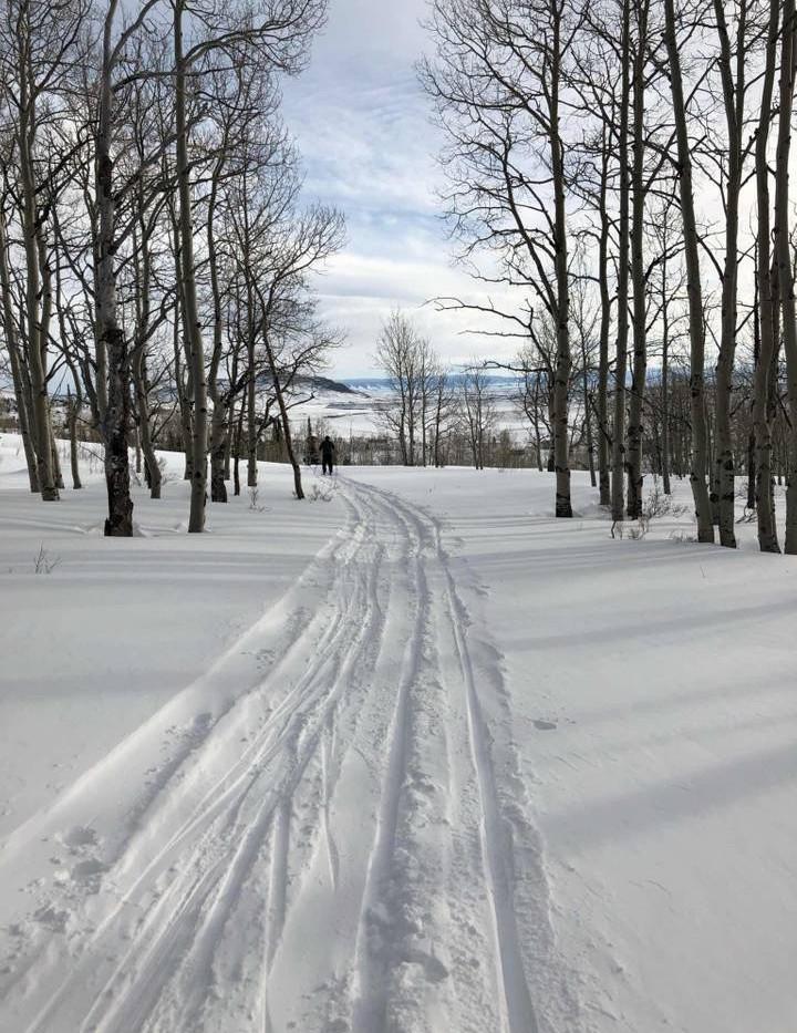 Elk RunTrail
